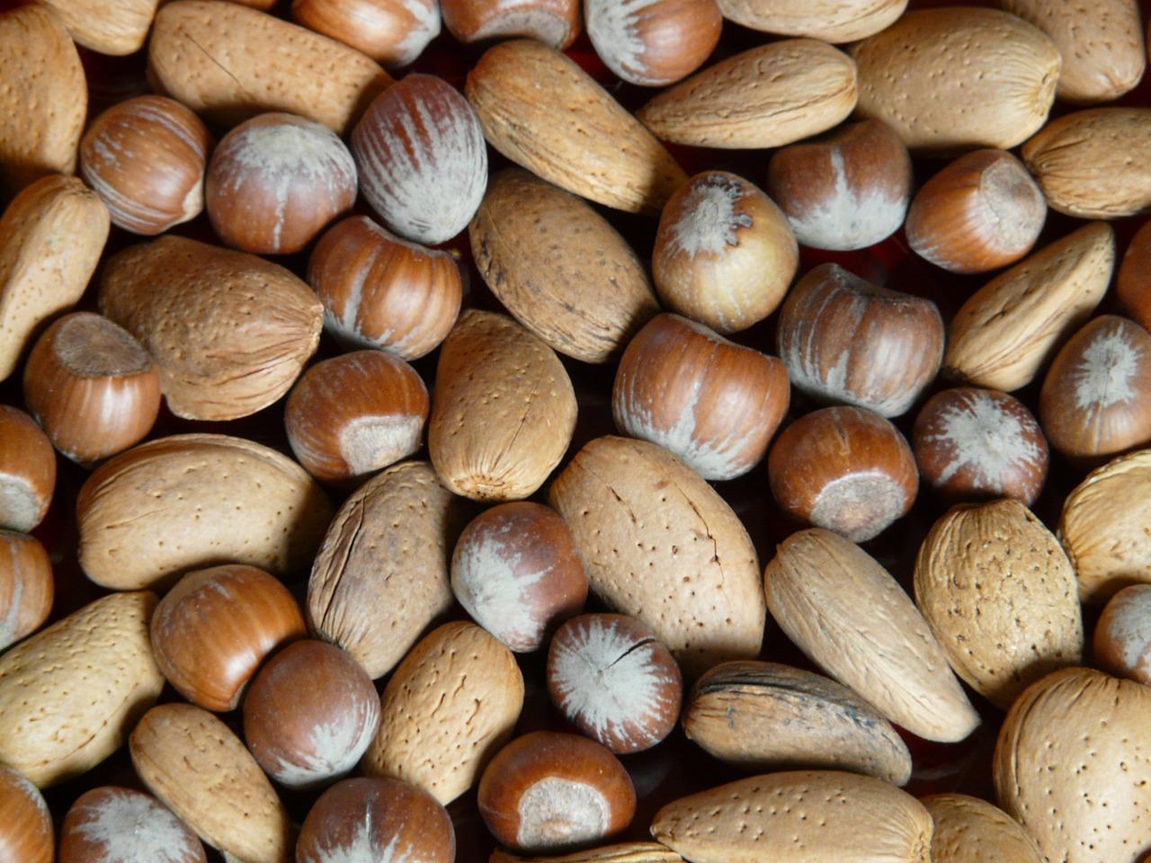 Spotlight on Tree Nuts: Panforte