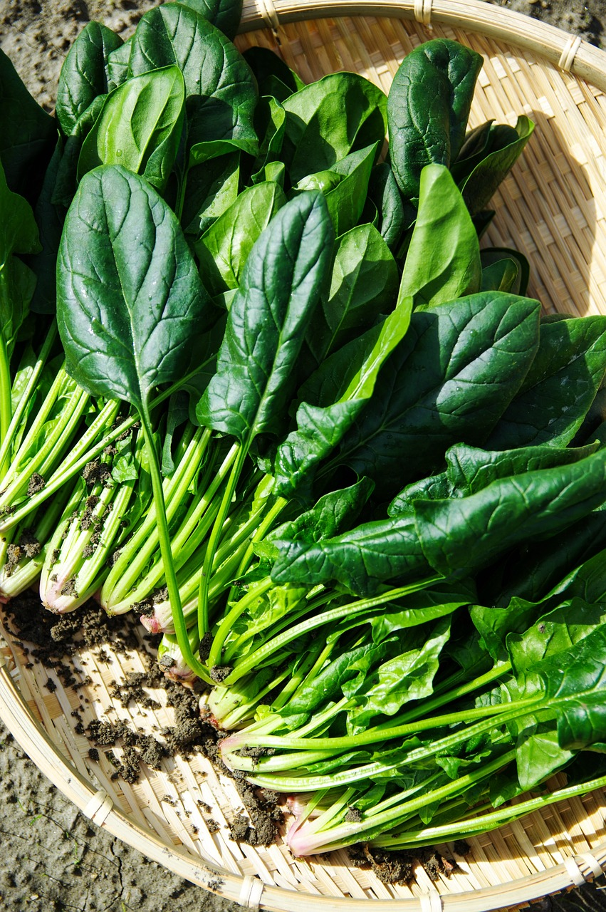 Spotlight On Leafy Greens: Spanakopita