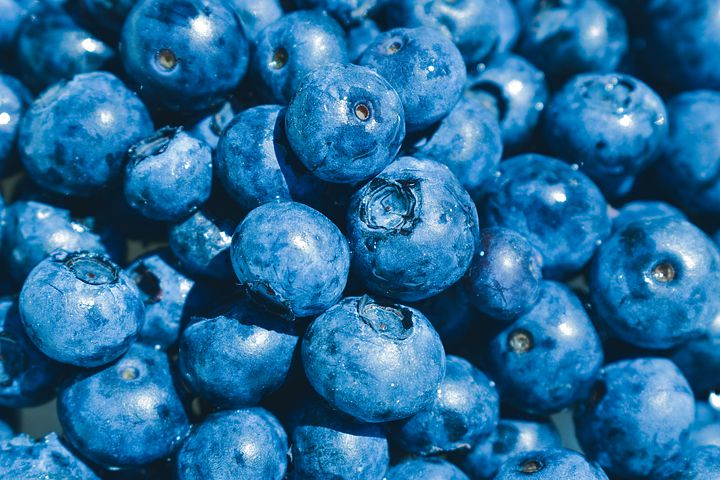 Spotlight on Berries: Blueberry Cream Cheese Muffins