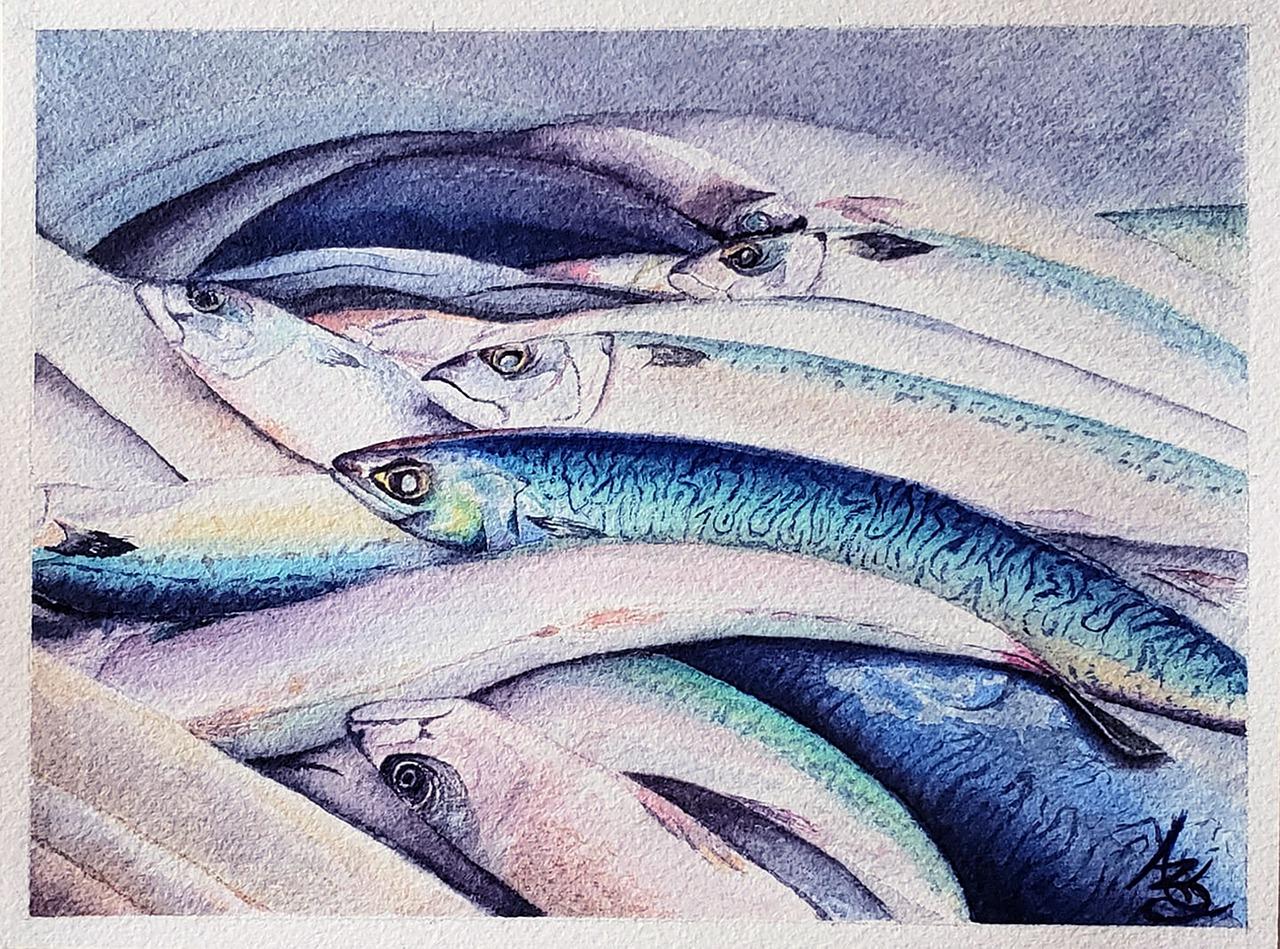 Spotlight on Seafood: Seafood Fricassee